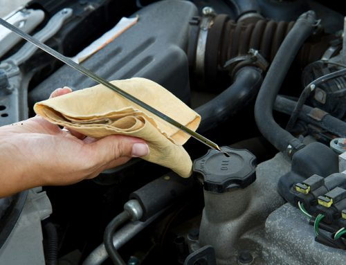 Type of Car Servicing Program compared